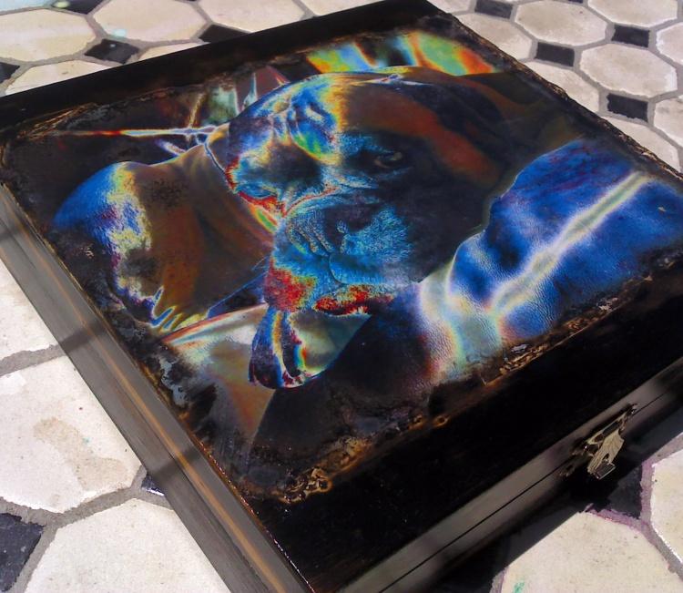 Rainbow Boxer box