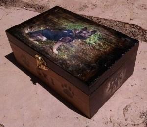 ski box
