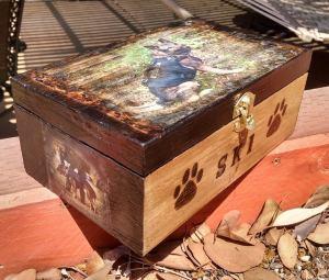 ski box2