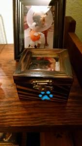 gid box5